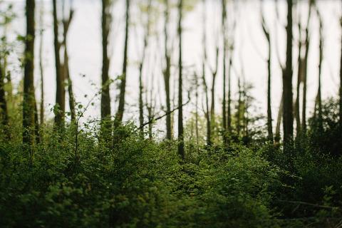Jonas_Seaman_Photography_TinaMattEngagement_1004